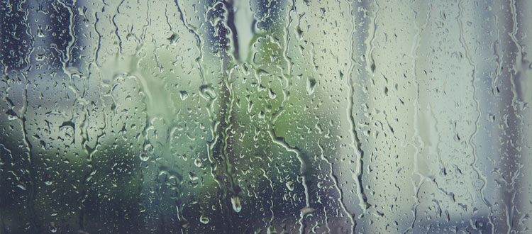 Should You Have Your Windows Cleaned In Rainy Weather?